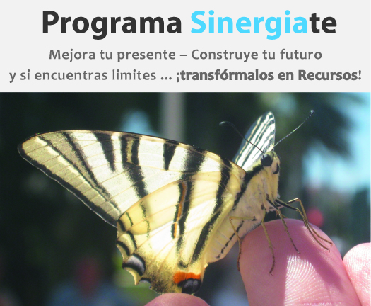 DO_Sinergia Programa Sinergiate